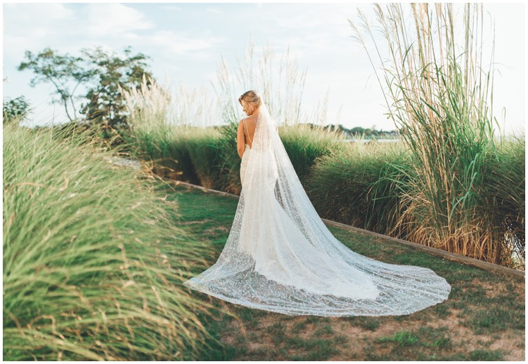 elegant wedding dress with long veil