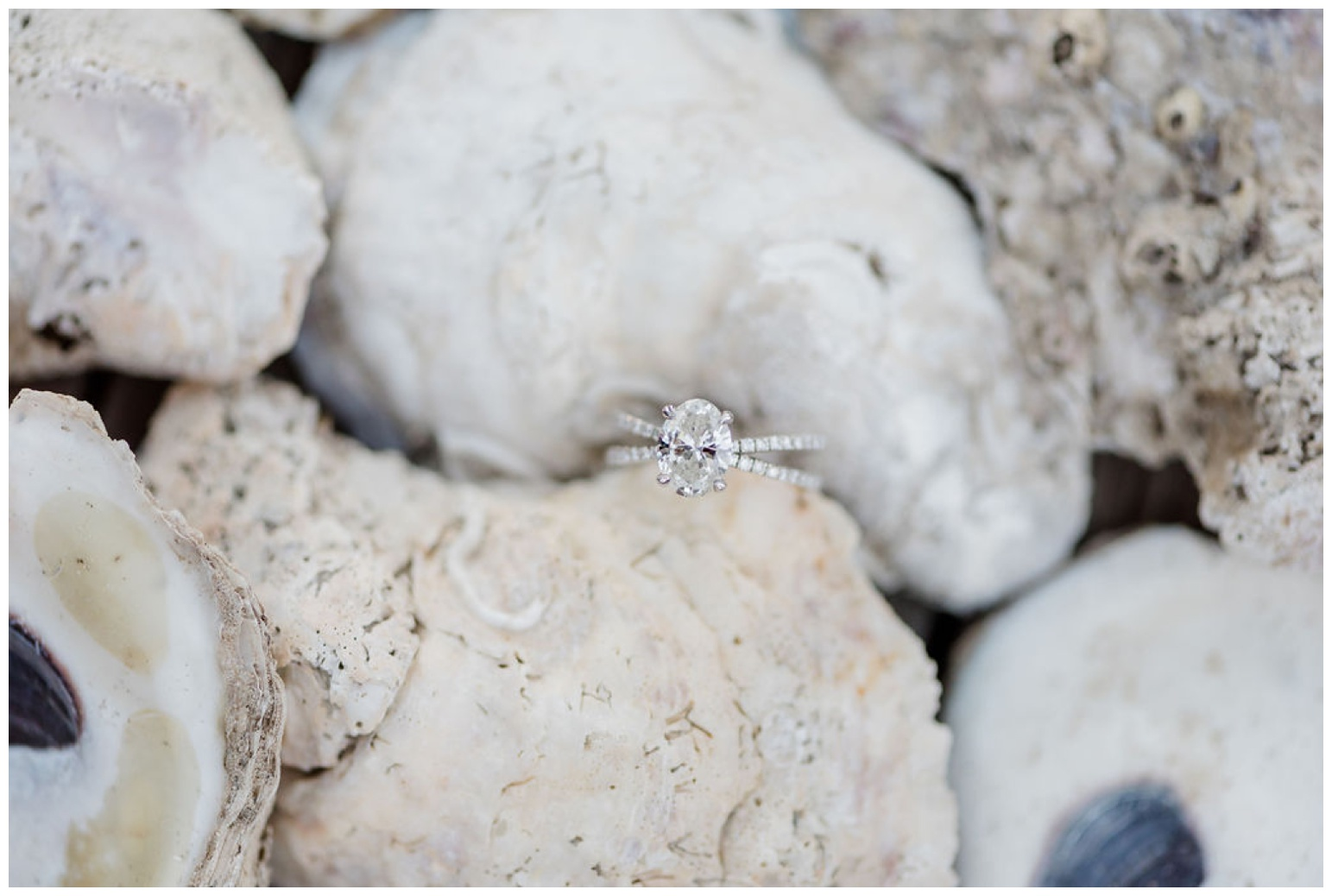 st. michaels engagement shoot - chesapeake bay inspired photo session - coastal maryland inspo full of oyster shells, sailboats, waterfront views from the dock and pier | now featured on My Eastern Shore Wedding