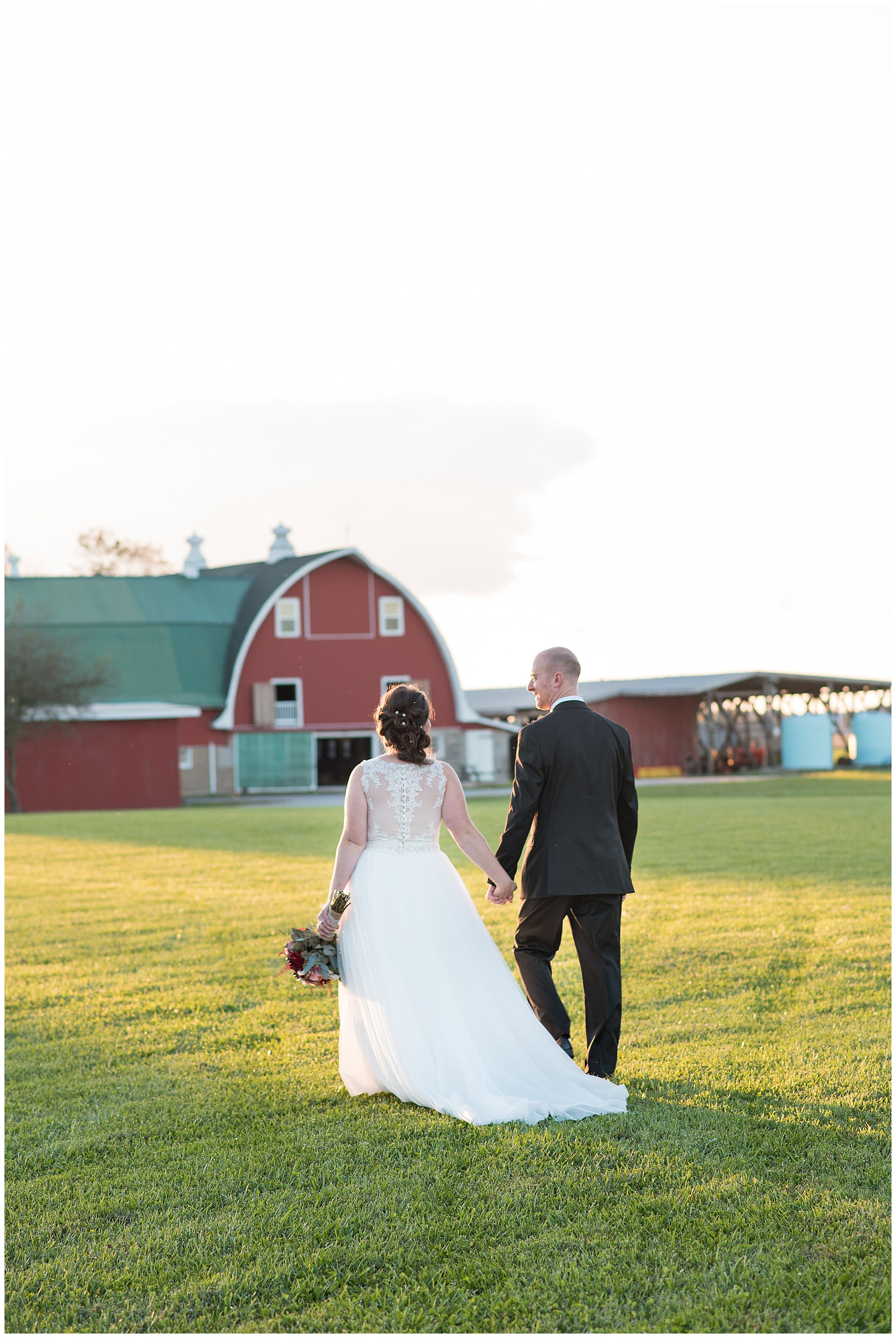 wedding photos at covered bridge inn bed and breakfast farm in lewes delaware. historic wedding barn venue on the eastern shore. fall wedding in november with rustic decor theme. couple walking holding hands towards red barn wearing white wedding dress and black suit. the sun is setting in the background.