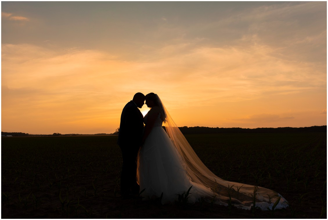 bride and groom portrait at sunset happily ever after | My Eastern Shore Wedding | J Nicole Photography